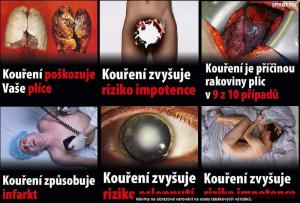 protikuracka_hovadina